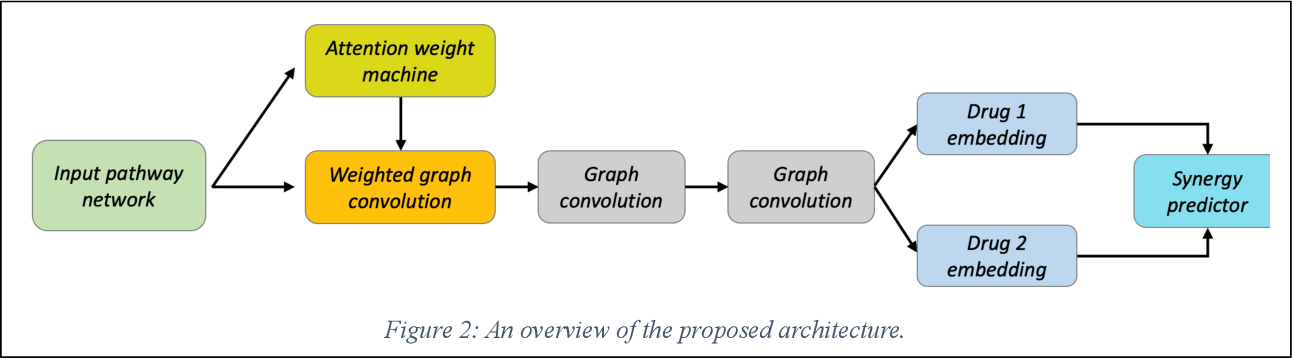 Figure 2 for Interpretable Drug Synergy Prediction with Graph Neural Networks for Human-AI Collaboration in Healthcare
