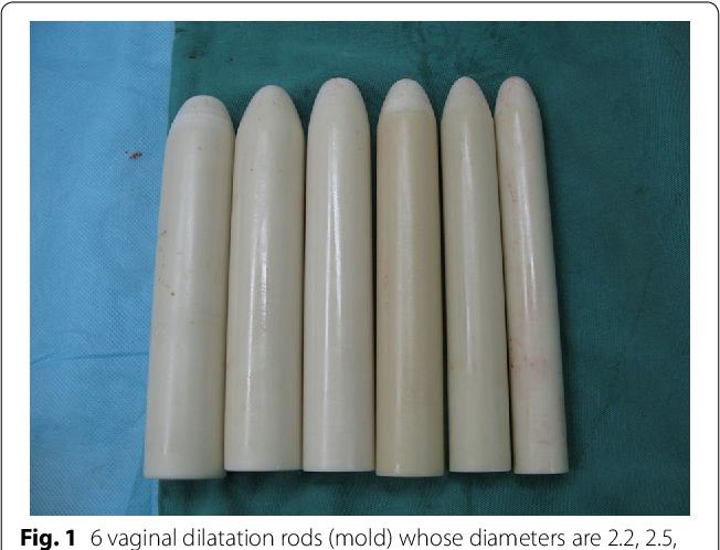 Fig. 1 6 vaginal dilatation rods (mold) whose diameters are 2.2, 2.5, 2.8, 3.0, 3.3, 3.5 cm, length is 20 cm (use in operation)