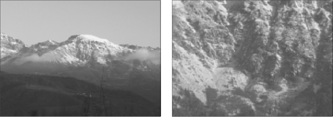 Figure 1 for Image Matching with Scale Adjustment