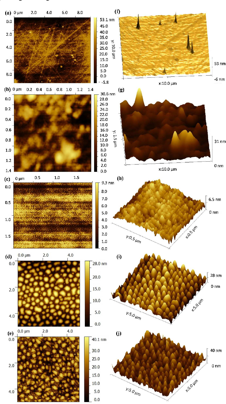 Figure 4 from Surface-Segregation-Induced Nanopapillae on