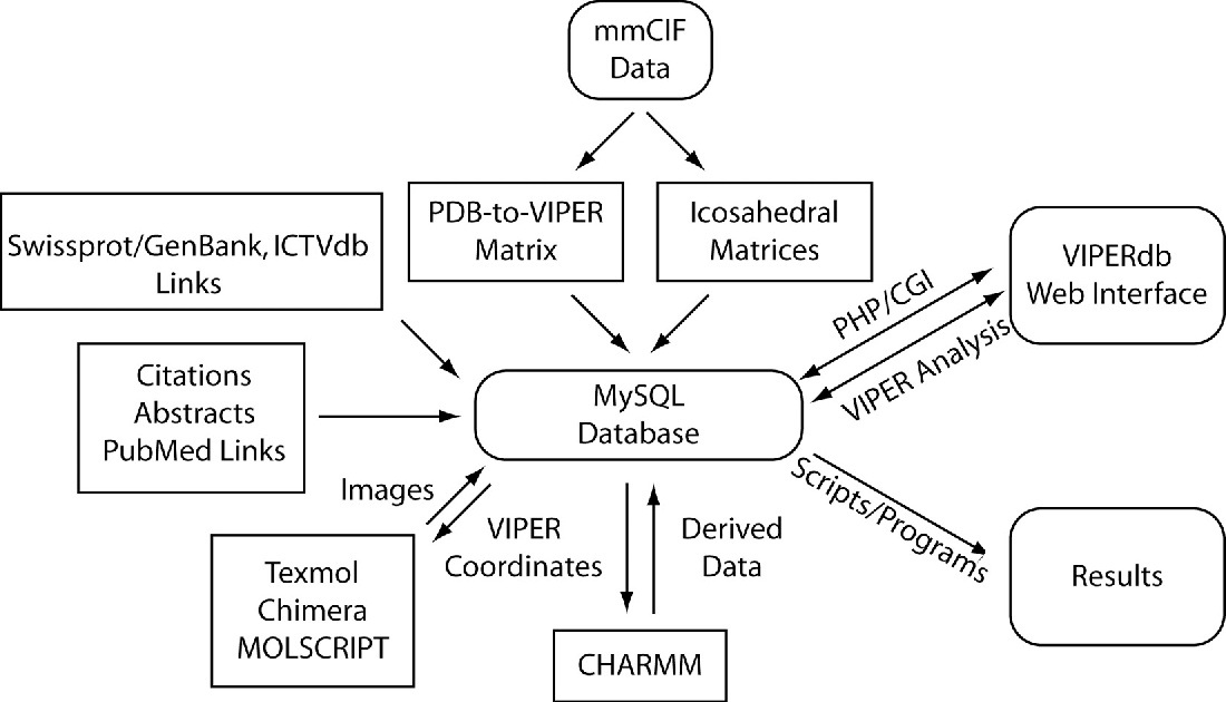 PDF] VIPERdb: a relational database for structural virology