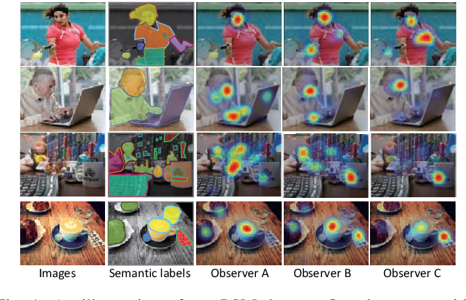 Figure 1 for Personalized Saliency and its Prediction