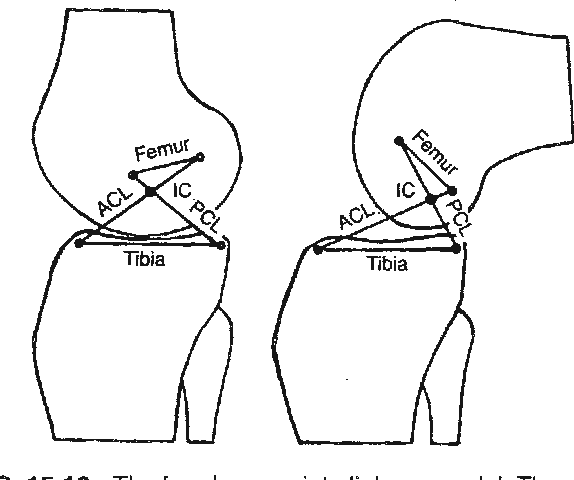 Figure 15 86 From The Injured Athlete