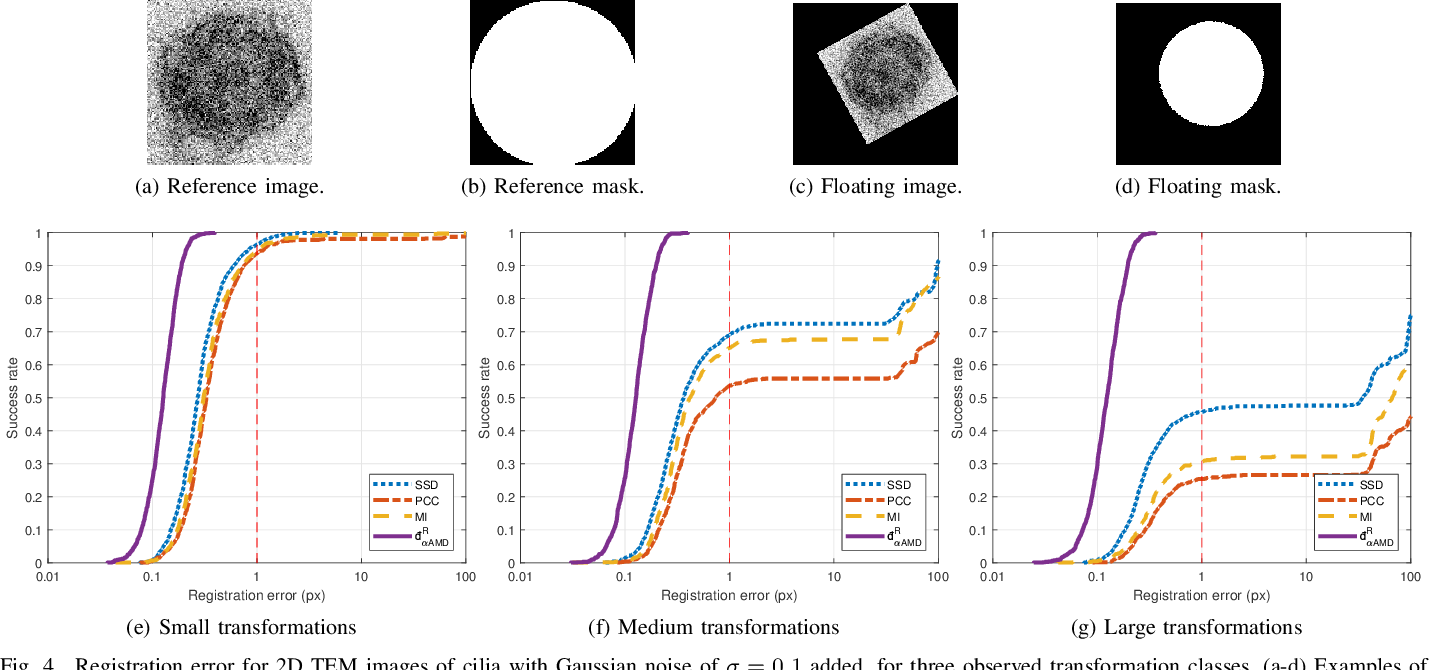 Figure 4 for Fast and Robust Symmetric Image Registration Based on Intensity and Spatial Information