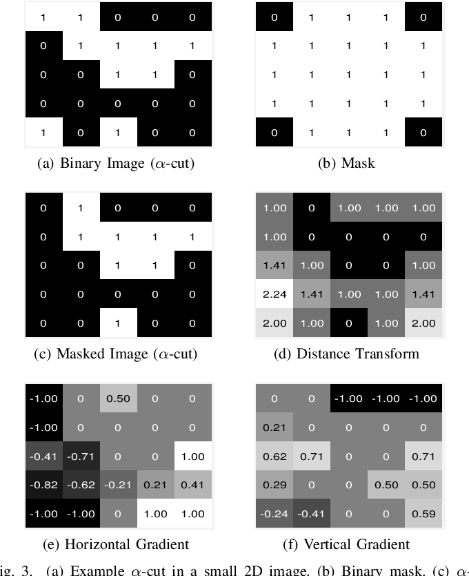 Figure 3 for Fast and Robust Symmetric Image Registration Based on Intensity and Spatial Information