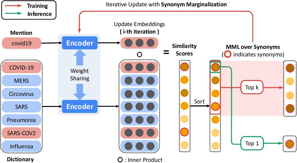 Figure 1 for Biomedical Entity Representations with Synonym Marginalization