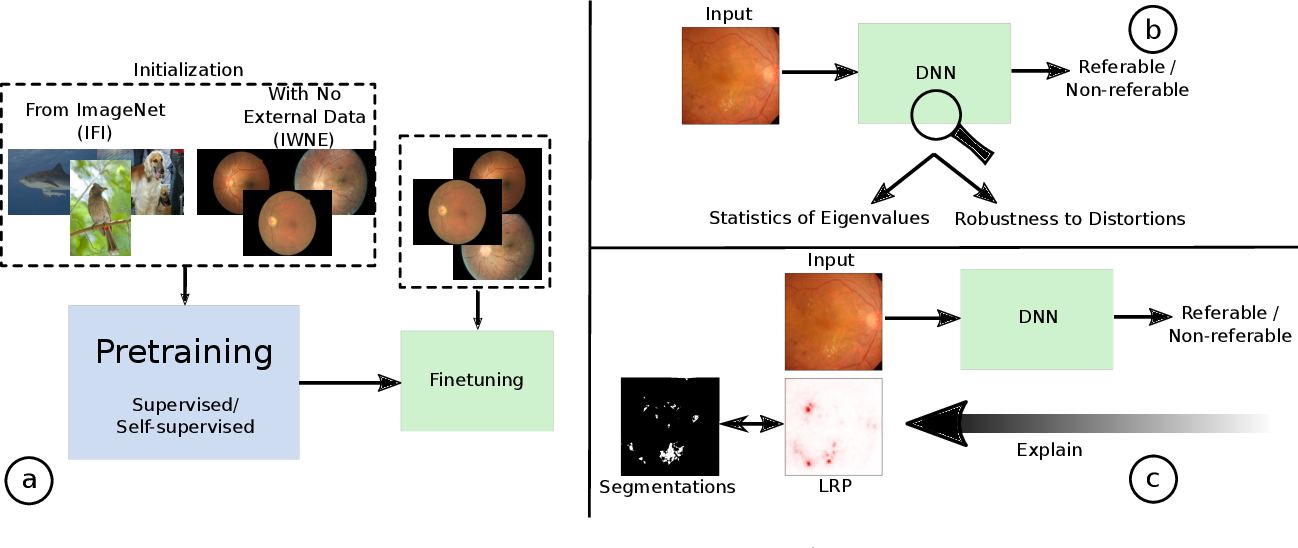 Figure 1 for On the Robustness of Pretraining and Self-Supervision for a Deep Learning-based Analysis of Diabetic Retinopathy