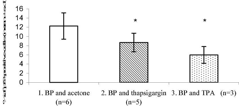 Figure 4 from Mechanism of benzo(a)pyrene-induced