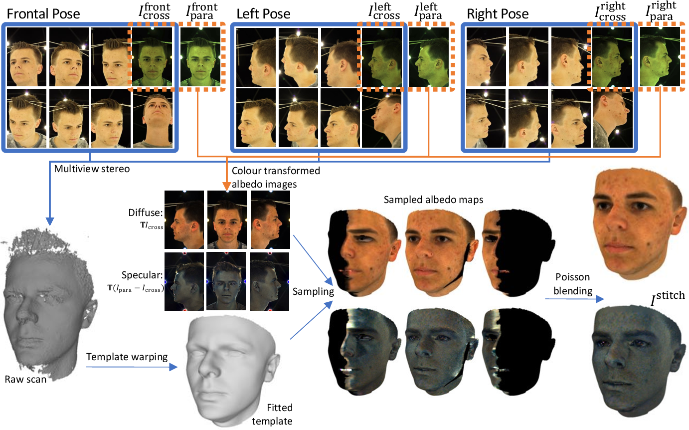 Figure 2 for A Morphable Face Albedo Model