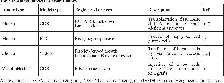 Figure 2 from Brain tumor modeling using the CRISPR/Cas9