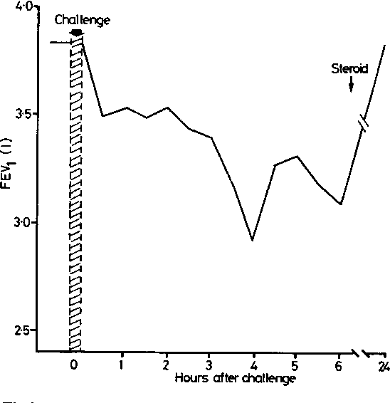 Fig 3 Late reaction to inhalation challenge with 2mlof 1% CoCl2.