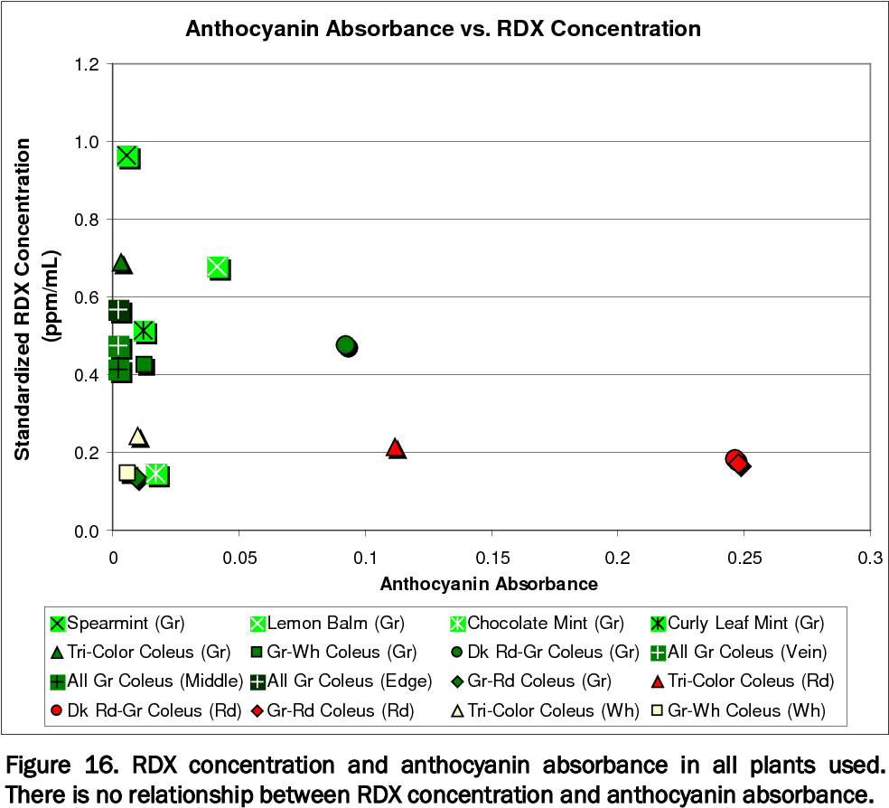 Figure 16. RDX concentration and anthocyanin absorbance in all plants used. There is no relationship between RDX concentration and anthocyanin absorbance.