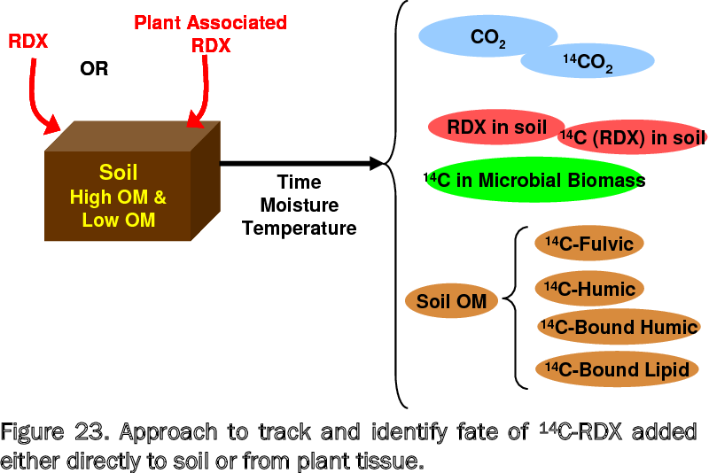 Figure 23. Approach to track and identify fate of 14C-RDX added either directly to soil or from plant tissue.