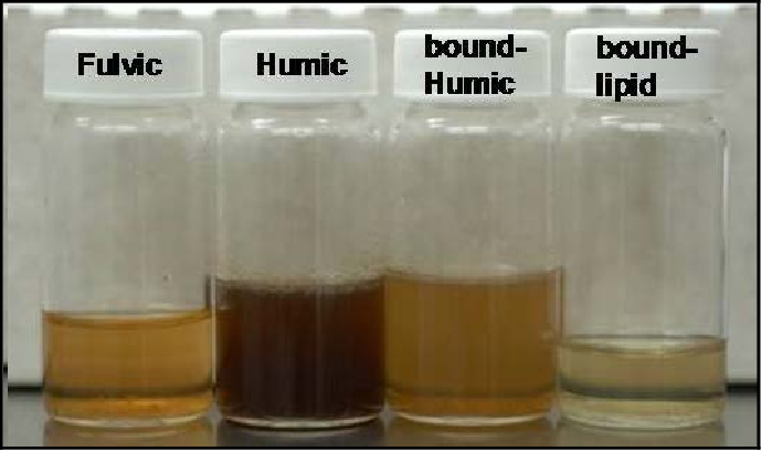 Figure 25. Color changes in the organic fractions following soil extraction.