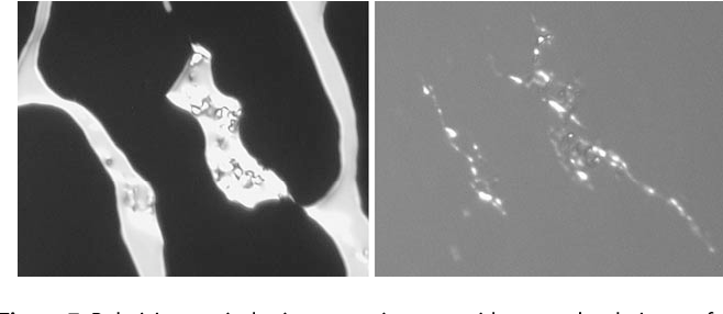 Figure 7. Polarizing optical microscope images, with crossed polarizers, of the texture of 5CB LC around a big CNT aggregate at the phase transition nematic–isotropic (left image) and isotropic–nematic (right image). The birefringent areas around the aggregates indicate the nematic order while the black regions the isotropic organization. With permission from ref. [55] .