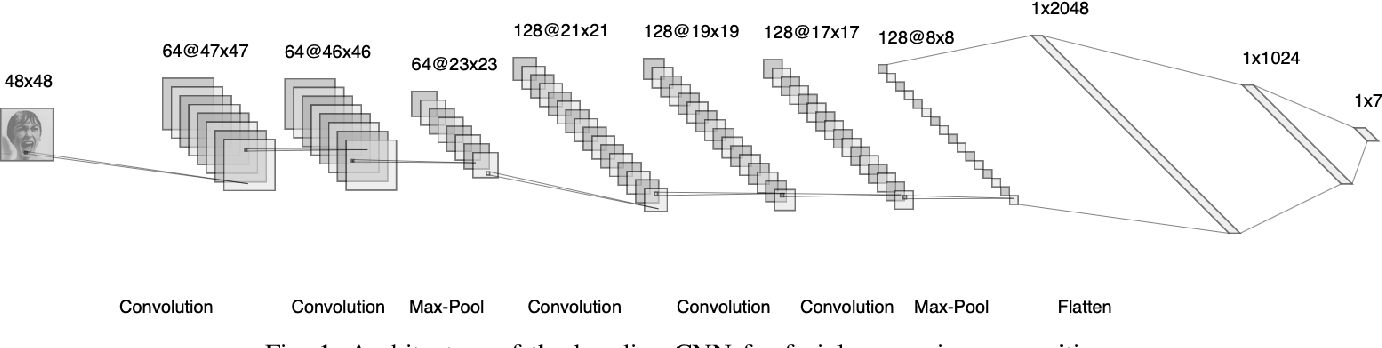 Figure 1 for Memory Integrity of CNNs for Cross-Dataset Facial Expression Recognition
