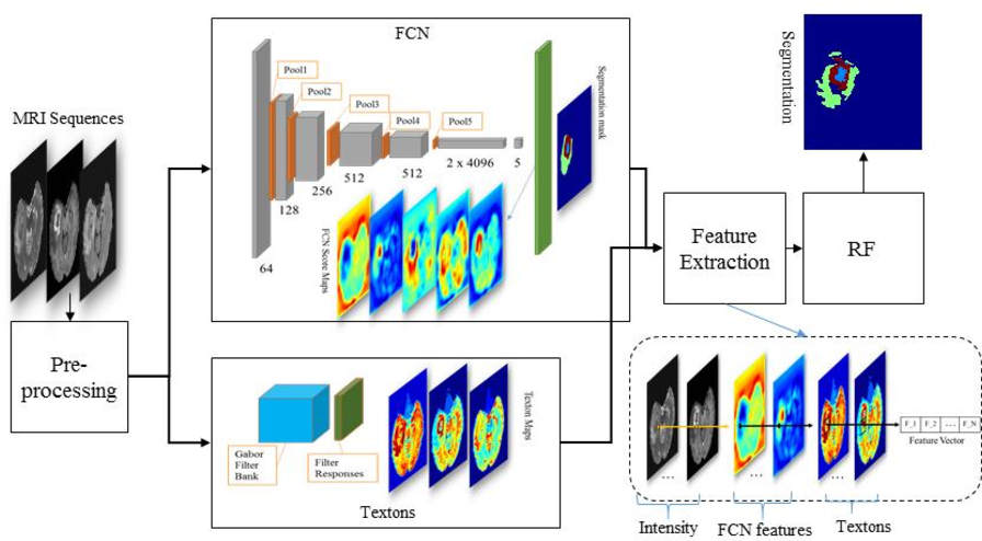Figure 1 for Multimodal MRI brain tumor segmentation using random forests with features learned from fully convolutional neural network