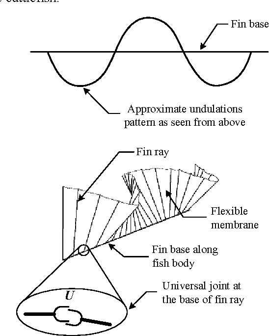 Figure 10 From Initial Experimental Investigation Of Undulating Fin