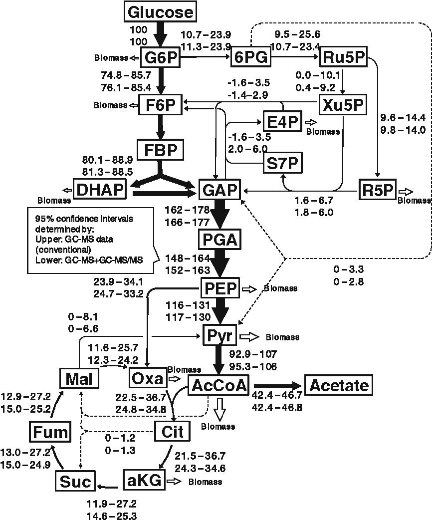 Ziemlich Kollisionsdiagramm Fotos - Verdrahtungsideen - korsmi.info