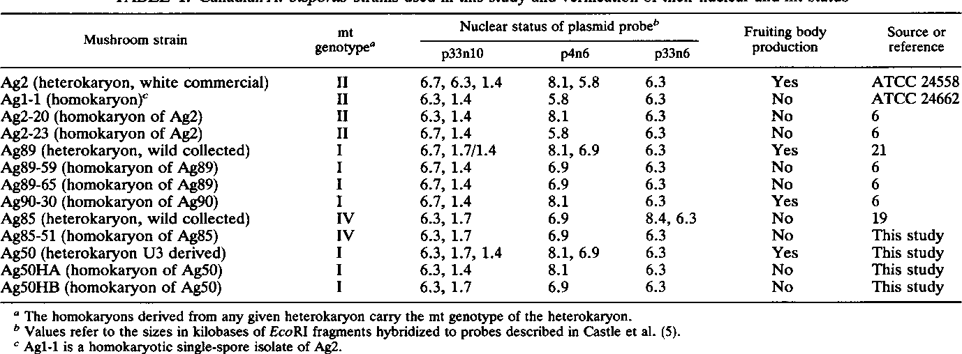 TABLE 1. Canadian A. bisporus strains used in this study and verification of their nuclear and mt status