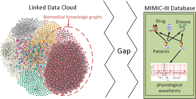 Figure 1 for PDD Graph: Bridging Electronic Medical Records and Biomedical Knowledge Graphs via Entity Linking