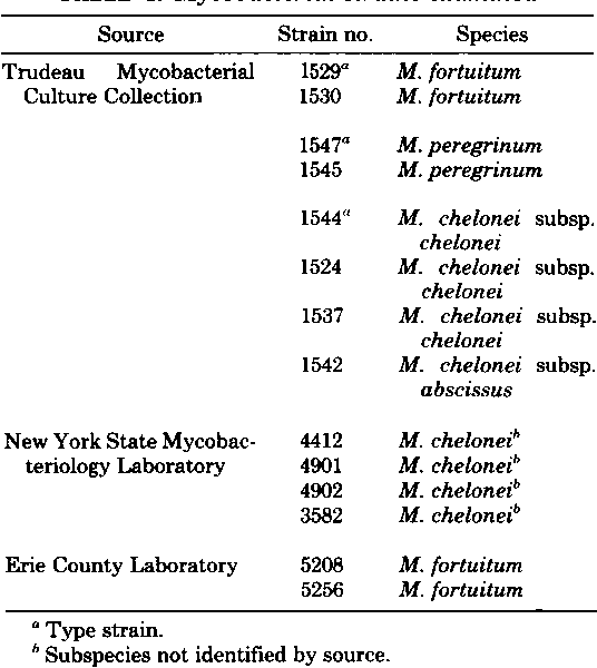 TABLE 1. Mycobacterial strains examined
