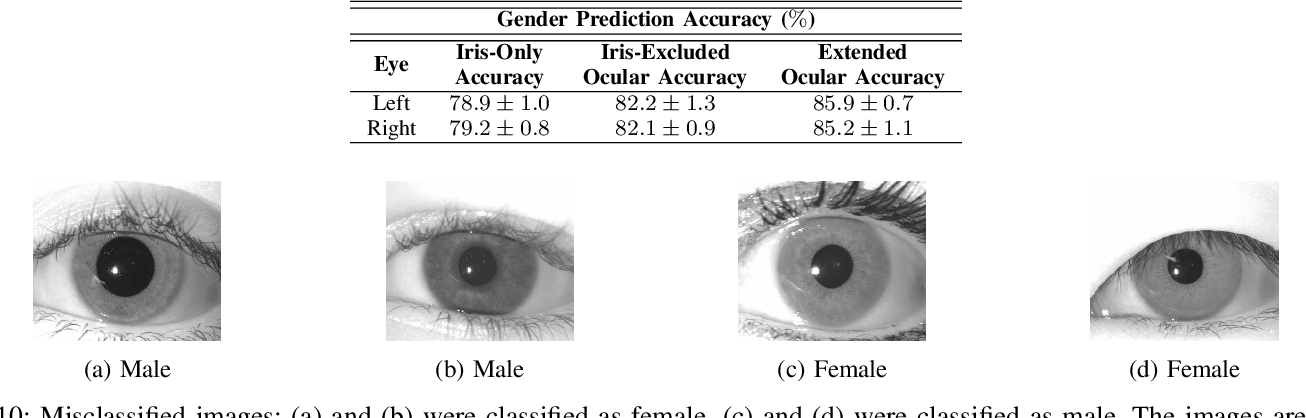 Figure 2 for Predicting Gender and Race from Near Infrared Iris and Periocular Images