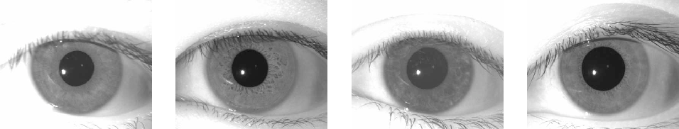 Figure 4 for Predicting Gender and Race from Near Infrared Iris and Periocular Images