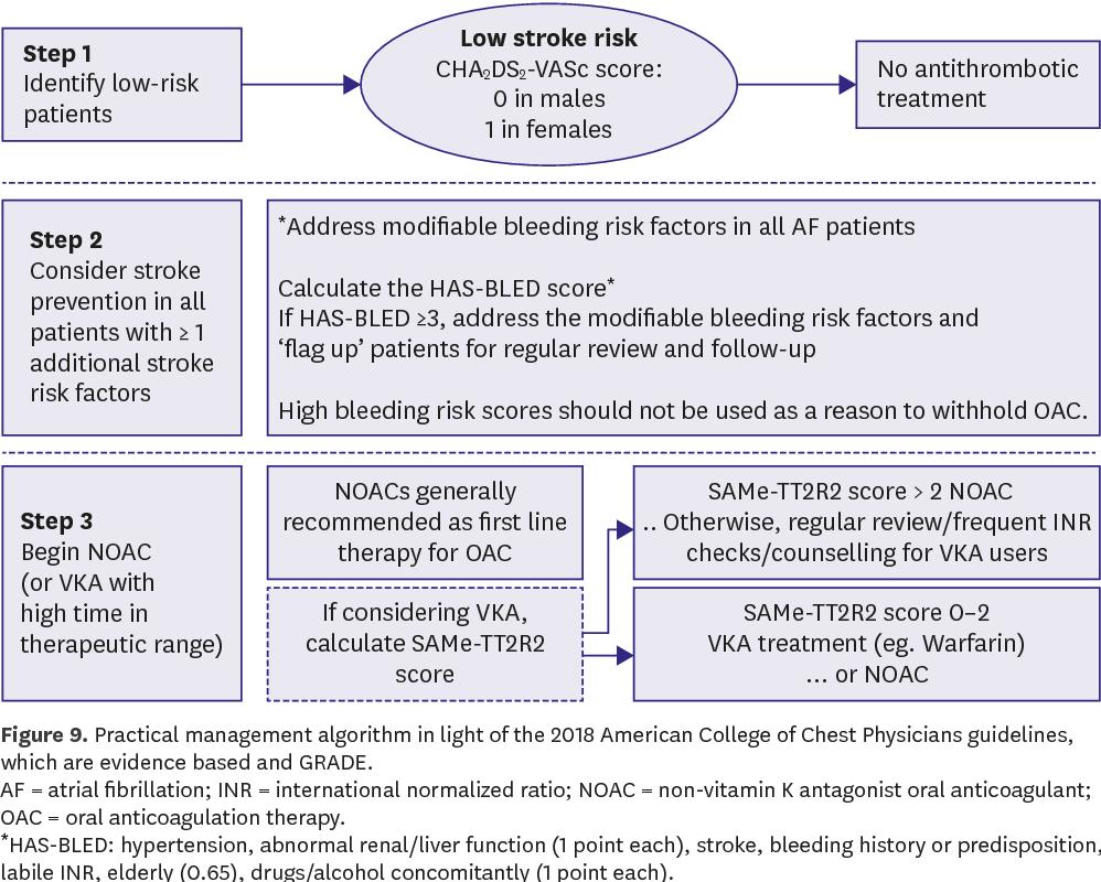 Figure 9 From 2018 Korean Guideline Of Atrial Fibrillation