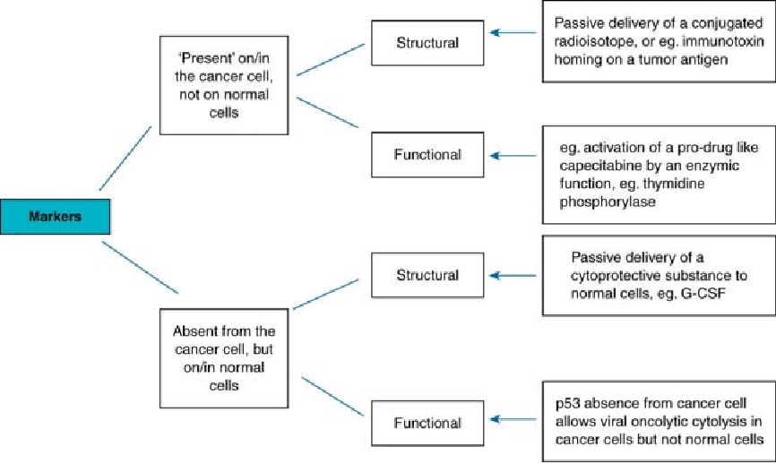 Figure 1 From Cancer Beyond Speciation Semantic Scholar