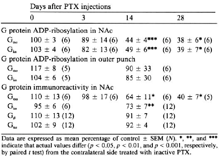 Table 1. Effect of intra-NAc PTX on G protein ADP-ribosylation and immunoreactivity