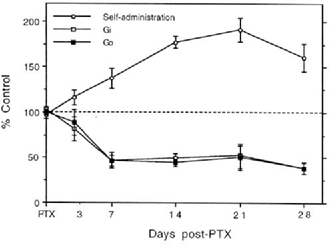 Figure 7. Time course of PTX-induced increases in cocaine self-administration and inactivation of G, and G, proteins in the NAc as assessed by ADP-ribosylation. The data for cocaine self-administration are expressed as the mean + SEM percentage of individual pre-PTX baselines (N = 6): the data for ADP-ribosvlation exneriments are expressed as the mean f SEM percentage of thk contralaieral NAc injected with inactive PTX (N = 6 for each time point).