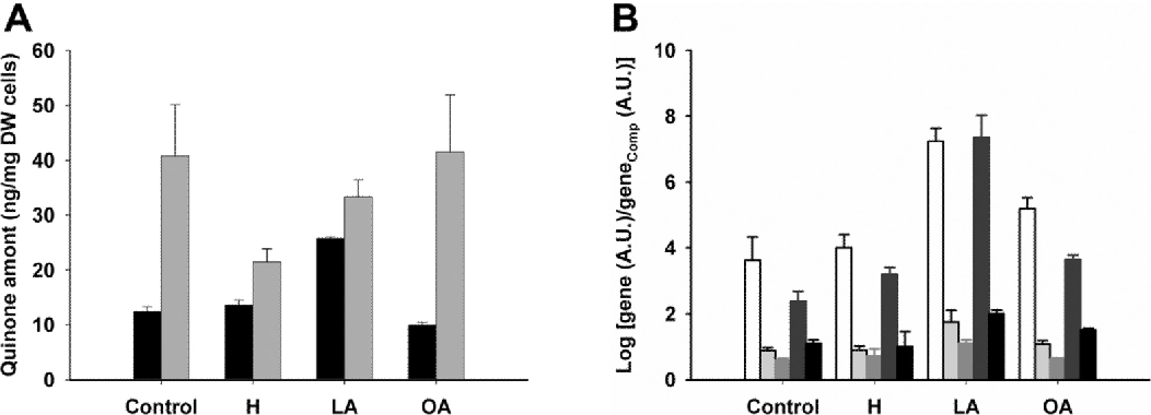 Figure 5. COQ RNA levels and content of Q6 and DMQ6 in response to oxidative stress. CEN.PK2– 1C cells were subjected to different oxidative stress conditions (1mM H2O2, or 750 μM linolenic acid) or to control treatments (no addition, or 750 μM oleic acid) for four hours. Cells (900 × 106) were collected and analyzed for quinone content as described (A; Q6, black bars; DMQ6, gray bars). About 200 × 106 cells were collected to determine COQ RNA content (Fig. S1C), and densitometry data were plotted to calculate gene expression (B). Bars correspond (from white to black) to COQ3, COQ4, COQ5, COQ7 and ABC1/ COQ8 genes. Control, cells without oxidative stress treatment; H, 1mM H2O2 incubation; LA, 750 μM linolenic acid; OA, 750 μM oleic acid. RNA levels presented are from the average of two independent PCR reactions ± SD derived from the same total RNA sample. Data are representative of two similar experiments.