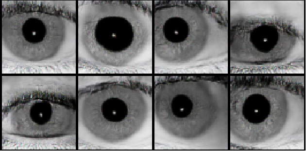 Figure 1 for Iris-GAN: Learning to Generate Realistic Iris Images Using Convolutional GAN