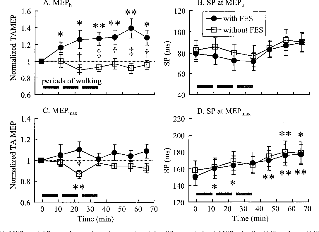 Short Term Effects Of Functional Electrical Stimulation On Motor Schematic The Electronic Muscle Timer Figure 3