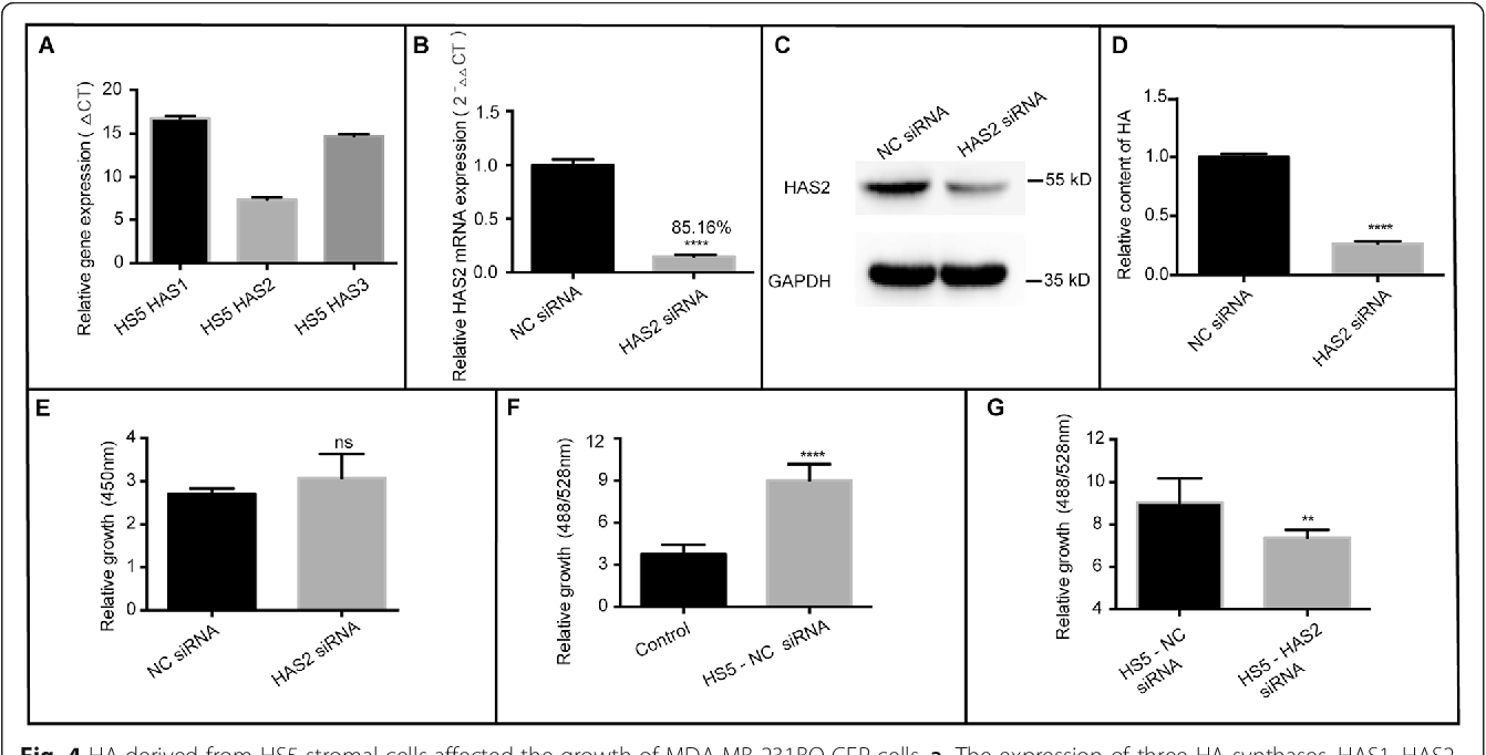 Inactivation of ABL Kinases Suppresses Lung Cancer