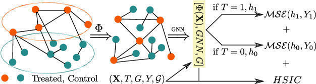 Figure 1 for Causal Inference under Networked Interference
