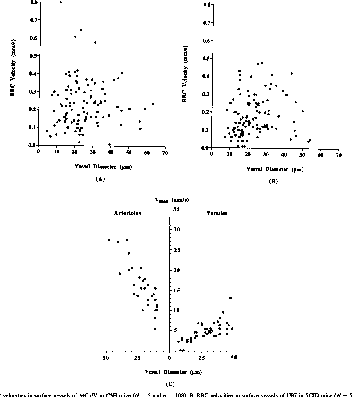 Vascular permeability and microcirculation of gliomas and mammary ...
