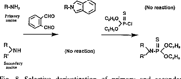 Derivatization reactions for the determination of amines by gas