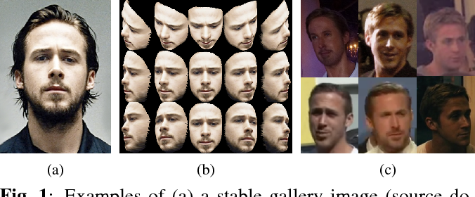 Figure 1 for SSPP-DAN: Deep Domain Adaptation Network for Face Recognition with Single Sample Per Person