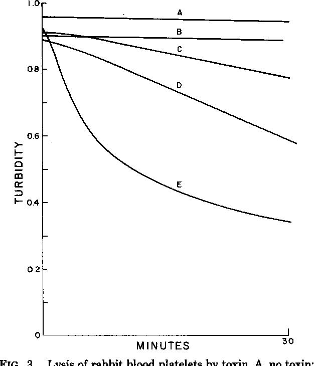 FIG. 3. Lysis of rabbit blood platelets by toxin. A, no toxin; B, 0.1 HU/ml; C, 1 HU/ml; D, 2 HU/ml; E, 10 HU/ml.