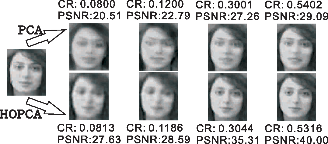 Figure 3 for A Report on Multilinear PCA Plus Multilinear LDA to Deal with Tensorial Data: Visual Classification as An Example