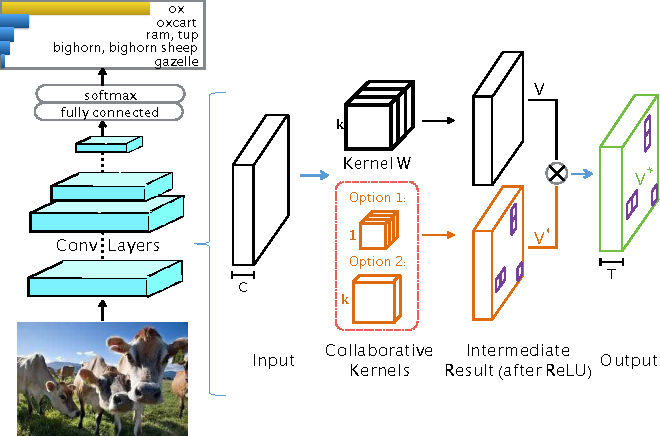 Figure 1 for More is Less: A More Complicated Network with Less Inference Complexity