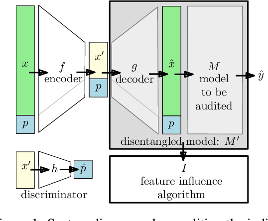 Figure 1 for Disentangling Influence: Using Disentangled Representations to Audit Model Predictions