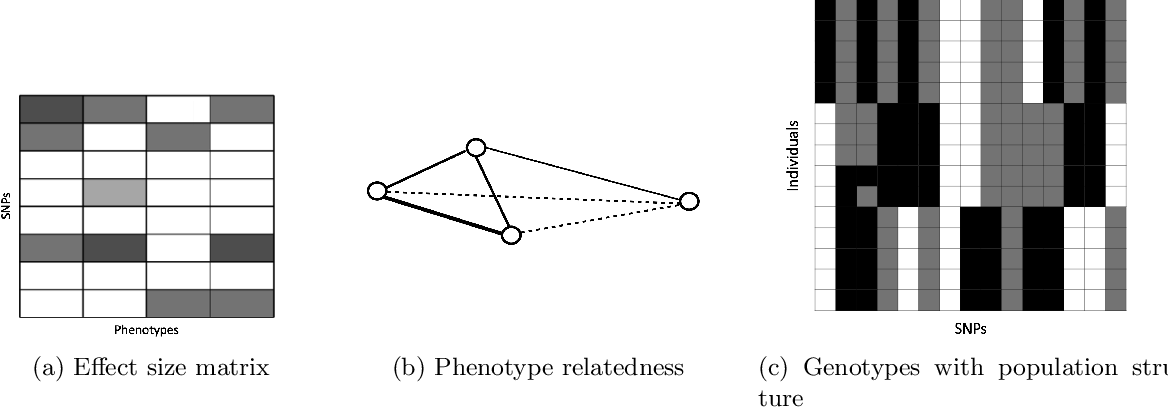 Figure 1 for A Sparse Graph-Structured Lasso Mixed Model for Genetic Association with Confounding Correction