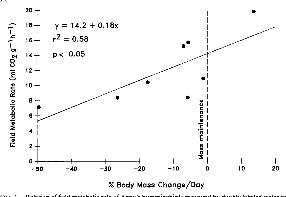 87beb8212a83c Figure 2 from Field Metabolic Rate and Food Consumption by Free ...