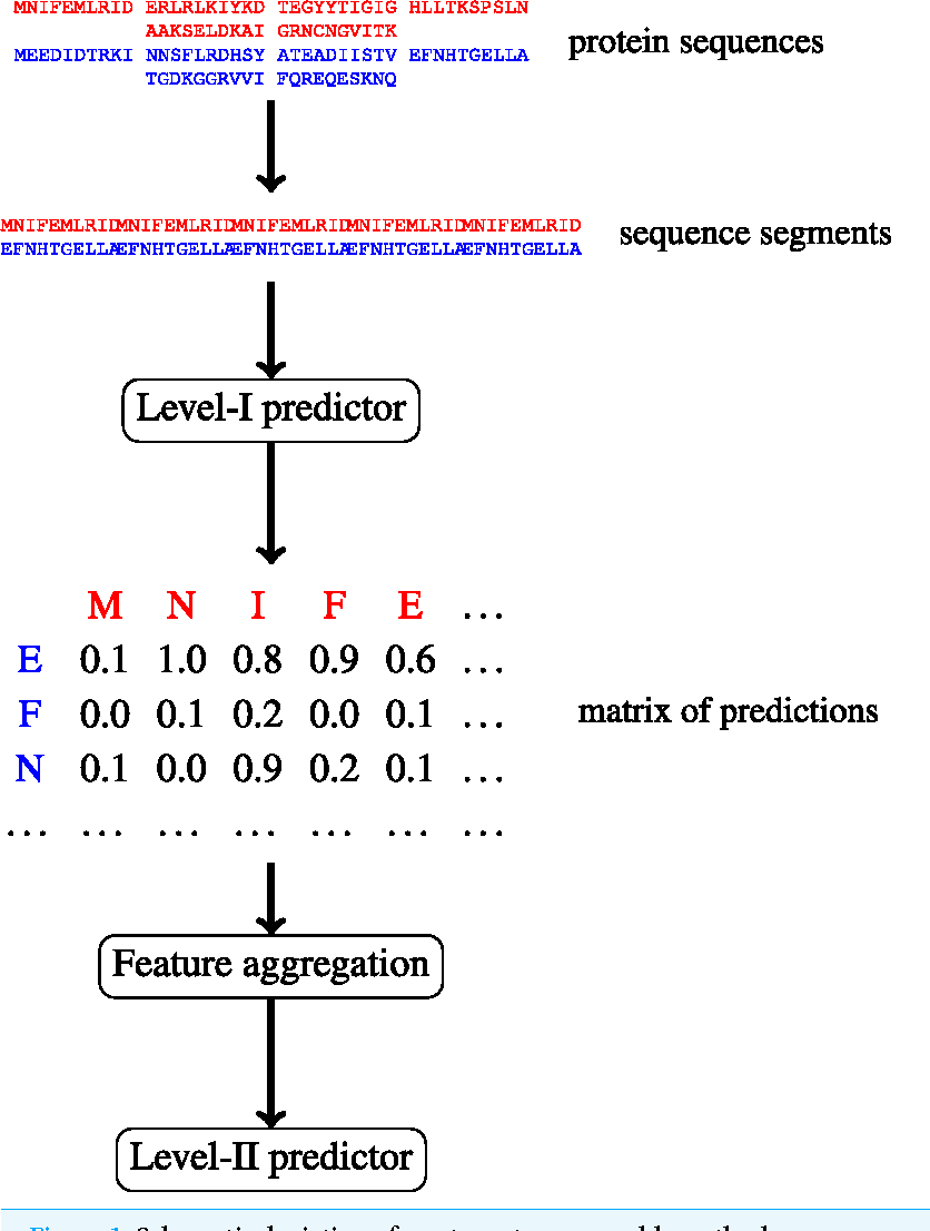 PDF] Multi-level machine learning prediction of protein–protein