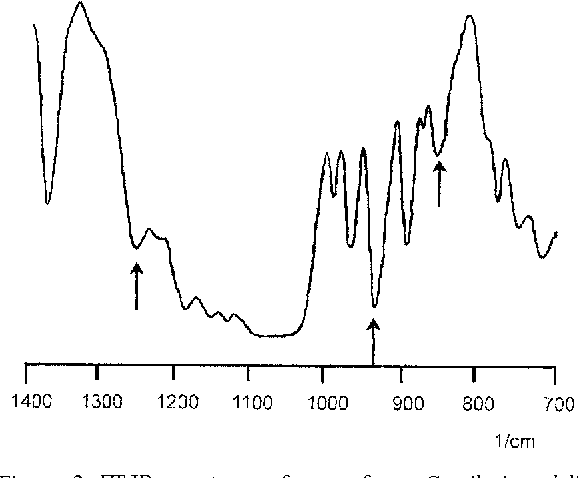 Figure 2. FT-IR spectrum of agar from Gracilaria edulis. Peaks marked with arrows are attributable to total sulfate ester (1250 cm−1), 3,6-anhydrogalactose (930 cm−1), and galactose-4-sulfate (850 cm−1).