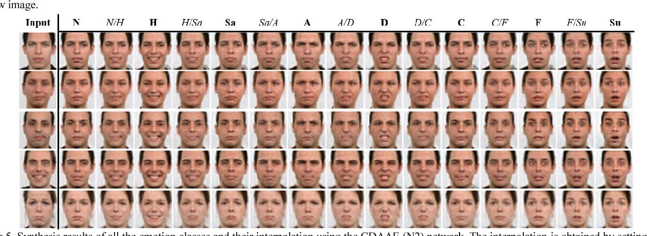 Figure 1 for Photorealistic Facial Expression Synthesis by the Conditional Difference Adversarial Autoencoder