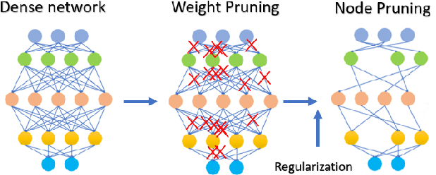 Figure 1 for The Role of Regularization in Shaping Weight and Node Pruning Dependency and Dynamics